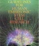 Guidelines for Human Embryonic Stem Cell Research