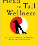 Head to Tail Wellness Western Veterinary Medicine Meets Eastern Wisdom