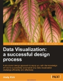 Data Visualization: a successful design process