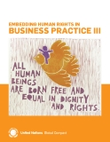 Embedding Human rigHts in business Practice iii