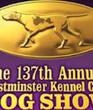 THE WESTMINSTER KENNEL CLUB (Member of the American Kennel Club) JUDGING PROGRAM 2013