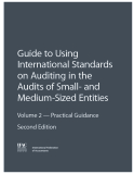 HEIs - Guide to Using International Standards on Auditing in the  Audits of Small- and  Medium-Sized Entities