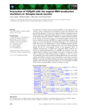 Báo cáo khoa học: Interaction of 42Sp50 with the vegetal RNA localization machinery in Xenopus laevis oocytes