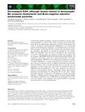 Báo cáo khoa học: Dermaseptin DA4, although closely related to dermaseptin B2, presents chemotactic and Gram-negative selective bactericidal activities