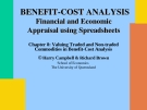 Valuing Traded and Non-traded Commodities in Benefit-Cost Analysis