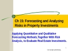 Forecasting and Analyzing Risks in Property Investments