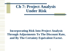 Project Analysis Under Risk