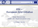 EGI –  European Grid Initiative