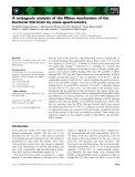 Báo cáo khoa học: A mutagenic analysis of the RNase mechanism of the bacterial Kid toxin by mass spectrometry