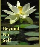 BEYOND NO SELF