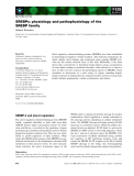 Báo cáo khoa học: SREBPs: physiology and pathophysiology of the SREBP family