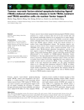 Báo cáo khoa học: Tumour necrosis factor-related apoptosis-inducing ligand (TRAIL)-induced chemokine release in both TRAIL-resistant and TRAIL-sensitive cells via nuclear factor kappa B