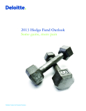 2013 Hedge Fund Outlook Some gains, more pain