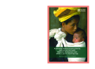 High-level consultation to accelerate progress towards achieving  maternal and child health Millenium  Development Goals (MDGs) 4 and 5 in South-East Asia