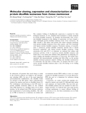 Báo cáo khoa học: Molecular cloning, expression and characterization of protein disulfide isomerase from Conus marmoreus