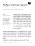 Báo cáo khoa học: Heterologous expression of a serine carboxypeptidase-like acyltransferase and characterization of the kinetic mechanism