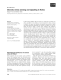 Báo cáo khoa học: Osmotic stress sensing and signaling in fishes