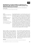 Báo cáo khoa học: Identification of critical residues of subunit H in its interaction with subunit E of the A-ATP synthase from Methanocaldococcus jannaschii
