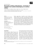 Báo cáo khoa học:  Mammalian xanthine oxidoreductase – mechanism of transition from xanthine dehydrogenase to xanthine oxidase