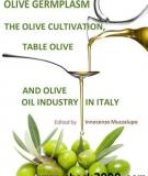 Olive Germplasm – The Olive Cultivation