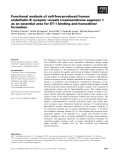 Báo cáo khoa học: Functional analysis of cell-free-produced human endothelin B receptor reveals transmembrane segment 1 as an essential area for ET-1 binding and homodimer formation