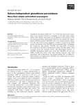 Báo cáo khoa học:  Seleno-independent glutathione peroxidases More than simple antioxidant scavengers