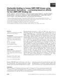 Báo cáo khoa học: Nucleotide binding to human UMP-CMP kinase using fluorescent derivatives ) a screening based on affinity for the UMP-CMP binding site