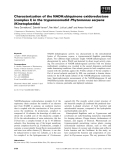 Báo cáo khoa học: Characterization of the NADH:ubiquinone oxidoreductase (complex I) in the trypanosomatid Phytomonas serpens (Kinetoplastida)