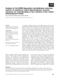 Báo cáo khoa học: Analysis of the NADH-dependent retinaldehyde reductase activity of amphioxus retinol dehydrogenase enzymes enhances our understanding of the evolution of the retinol dehydrogenase family