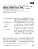 Báo cáo khoa học: Structural and functional consequences of single amino acid substitutions in the pyrimidine base binding pocket of Escherichia coli CMP kinase