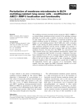 Báo cáo khoa học: Perturbation of membrane microdomains in GLC4 multidrug-resistant lung cancer cells ) modification of ABCC1 (MRP1) localization and functionality