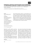 Báo cáo khoa học: Preliminary molecular characterization and crystallization of mitochondrial respiratory complex II from porcine heart