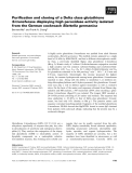 Báo cáo khoa học: Purification and cloning of a Delta class glutathione S-transferase displaying high peroxidase activity isolated from the German cockroach Blattella germanica