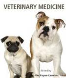 INSIGHTS FROM VETERINARY MEDICINE