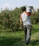 MARKETING STRATEGIES FOR AGRITOURISM OPERATIONS