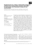 Báo cáo khoa học: Deciphering the key residues in Plasmodium falciparum b-ketoacyl acyl carrier protein reductase responsible for interactions with Plasmodium falciparum acyl carrier protein