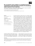 Báo cáo khoa học: Rac upregulates tissue inhibitor of metalloproteinase-1 expression by redox-dependent activation of extracellular signal-regulated kinase signaling
