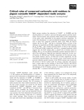 Báo cáo khoa học: Critical roles of conserved carboxylic acid residues in pigeon cytosolic NADP+-dependent malic enzyme