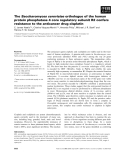 Báo cáo khoa học: The Saccharomyces cerevisiae orthologue of the human protein phosphatase 4 core regulatory subunit R2 confers resistance to the anticancer drug cisplatin