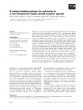 Báo cáo khoa học: A unique binding epitope for salvinorin A, a non-nitrogenous kappa opioid receptor agonist