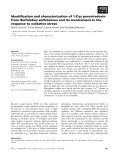 Báo cáo khoa học: Identification and characterization of 1-Cys peroxiredoxin from Sulfolobus solfataricus and its involvement in the response to oxidative stress