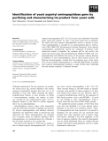 Báo cáo khoa học: Identification of yeast aspartyl aminopeptidase gene by purifying and characterizing its product from yeast cells