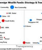 The Investment Strategies of  Sovereign Wealth Funds