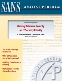 Making Database Security   an IT Security Priority: A SANS Whitepaper – November 2009