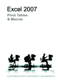Excel  2007 pivot and macro