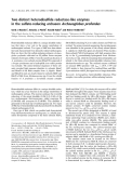 Báo cáo khóa học:  Two distinct heterodisulfide reductase-like enzymes in the sulfate-reducing archaeon Archaeoglobus profundus