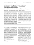 Báo cáo khoa học:  Bioinformatics of the glycoside hydrolase family 57 and identification of catalytic residues in amylopullulanase from Thermococcus hydrothermalis