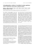 Báo cáo khóa học: Carboxydipeptidase activities of recombinant cysteine peptidases