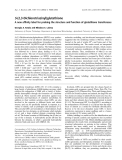 Báo cáo khóa học: S-(2,3-Dichlorotriazinyl)glutathione A new affinity label for probing the structure and function of glutathione transferases