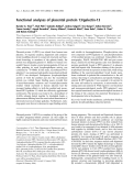 Báo cáo khóa học: Functional analyses of placental protein 13/galectin-13